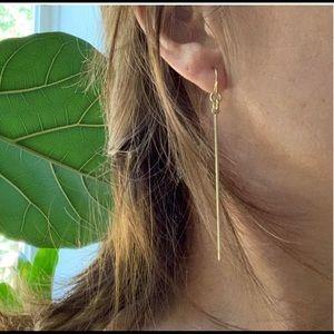 Dangle fish hook earrings